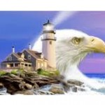Picture of Eagle and Lighthouse